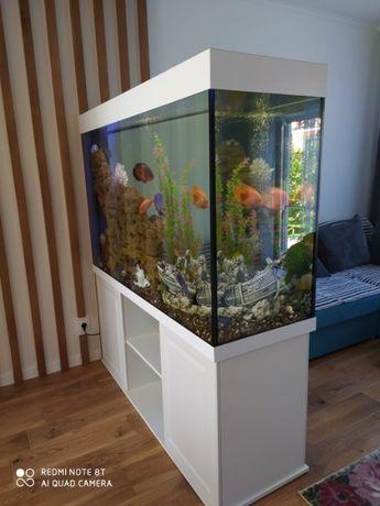 Изготовление аквариумов под заказ