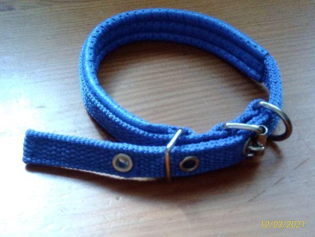 Coleira azul tamanho S