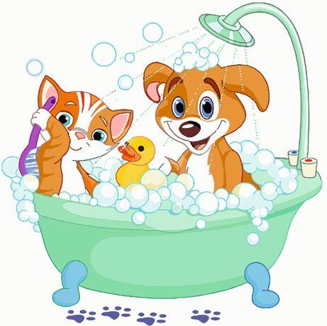 Banhos e tosquias