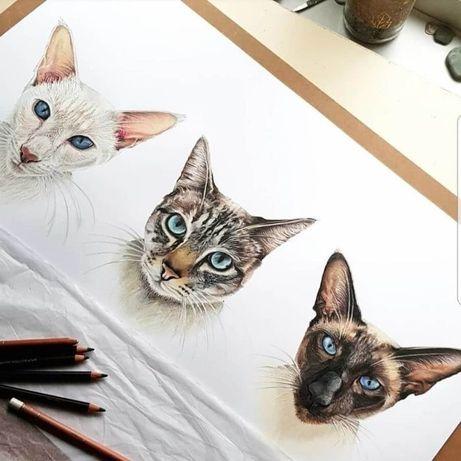 Retratos de animais domésticos e outros