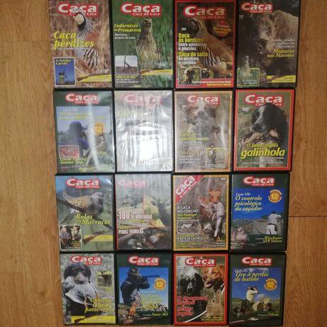 DVD Caça e cães de caça lote 51 DVD's