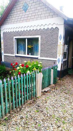 дом для всей семьи в годе Помошная Кировоградская область