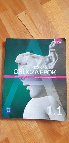 Podrecznik polski 1 WSIP