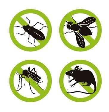 Уничтожение клопов, тараканов, крыс, мышей, клещей, дератизация