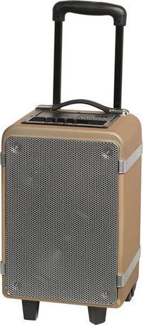 Denver TSP-150 Głośnik Bluetooth 20cm duży walizka na kółkach mikrofon
