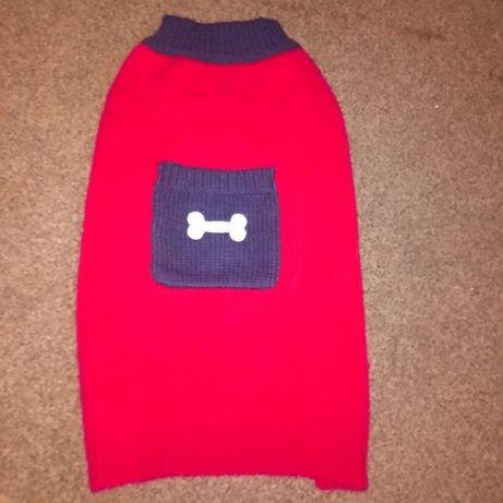 Czerwony sweterek dla psa