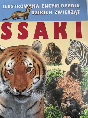 Encyklopedia dzikich zwierząt