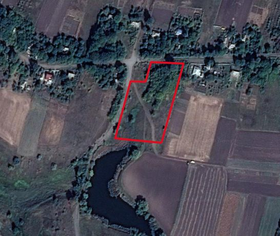 Продам землю на берегу озера с.Виселки, Кагарлицкий р-н, 0,5 га