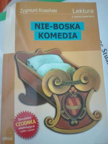 Zygmunt Krasiński Nie-Boska Komedia - lektura szkolna