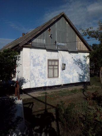 Дом с пасекой