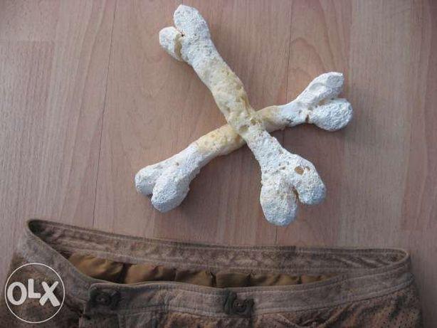 strój Wilmy, skórzany, 2 kości do włosów