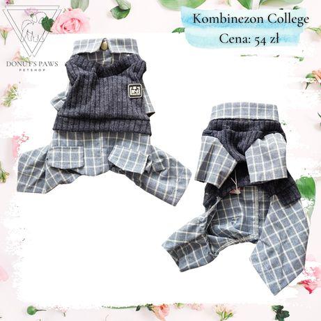 Ubranie dla psa - kombinezon College niebieski rozm. M