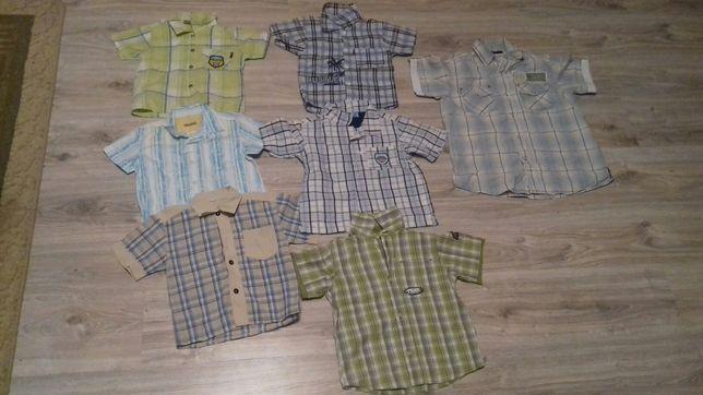 Koszule,koszulki z krótkim rękawem chłopięce,dla chłopca, 104,110,140