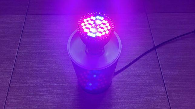 Żarówka 40 LED 30W do doświetlania kwiatów fito lampa