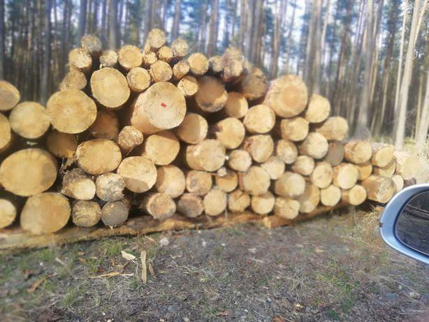 Drewno kominkowe, opałowe, rozpałka, zrzyny