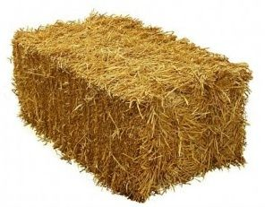 Продам тюки пшеничной соломи 2021 року.