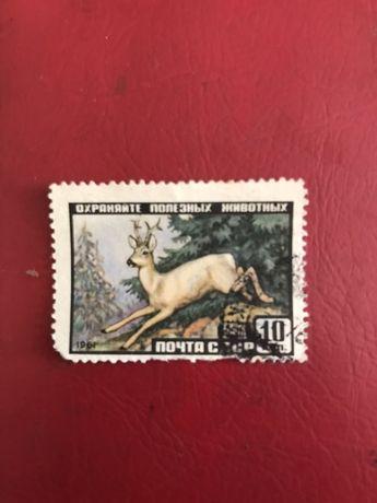 Почтовая марка «фауна СССР» 1961г.