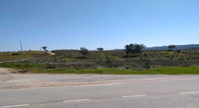 Terreno agrícola com 6ha.
