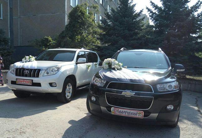 Машина на свадьбу, аренда авто