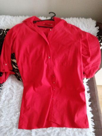 Koszulo, sukienka