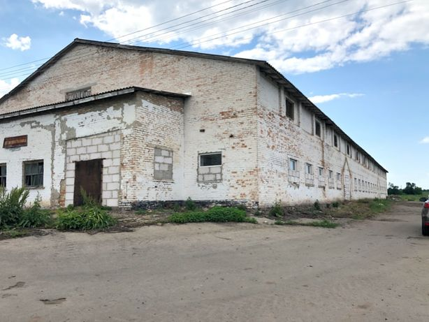 Продам нежитлове приміщення Ферму Київська область Богуславський район