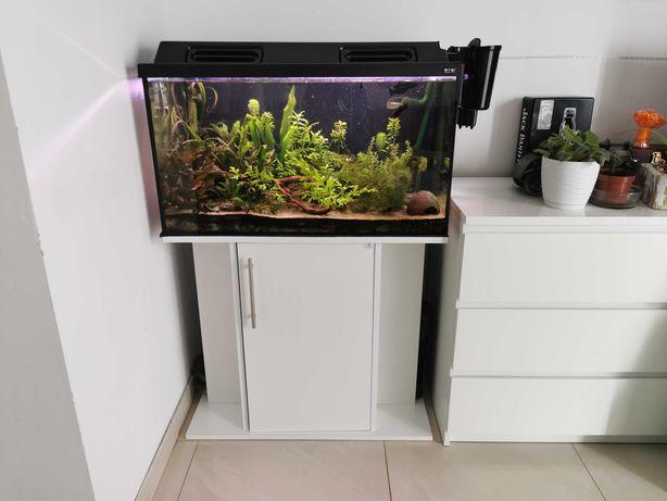 Akwarium 126l full wypas z szafką, pokrywą i dwoma filtrami