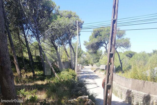 Terreno À Venda Em Aldeia De Juzo  Charneca - Guincho - Cascais