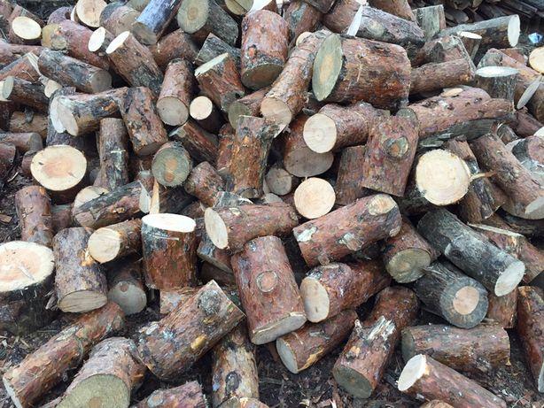 Drewno drzewo sosna 110zł