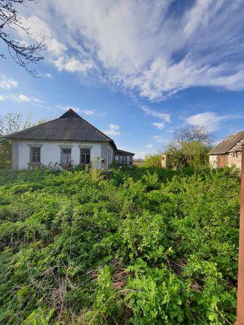 Продам участок 40 соток, Черняхов, Киевская обоасть