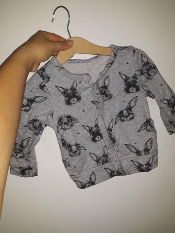 Bluza w króliki króliczki