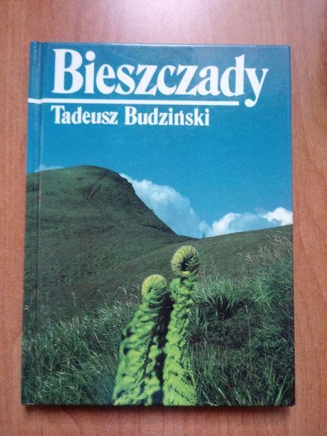 """""""Bieszczady"""" Tadeusz Budziński"""