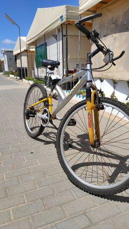 Bicicleta m power
