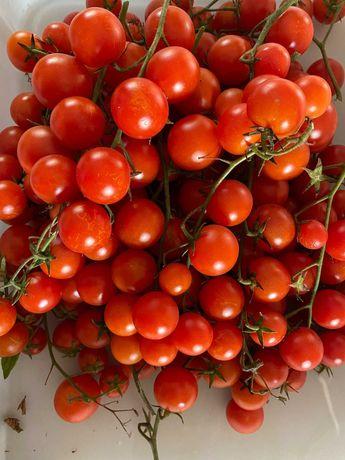 tomate cereja ou cherry