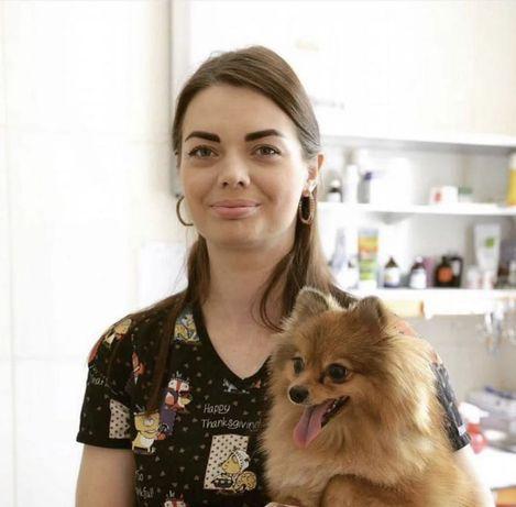 Ветеринар с выездом на дом
