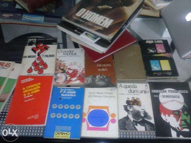 21 Varios livros