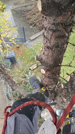 Wycinka drzew TRUDNYCH.karczowanie DZIAŁEKpielęgnacja ogrodów