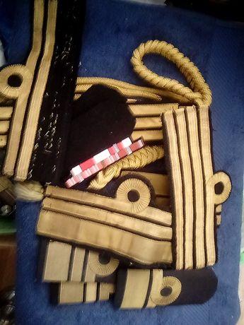 Ciekawy zestaw pagonów baretka