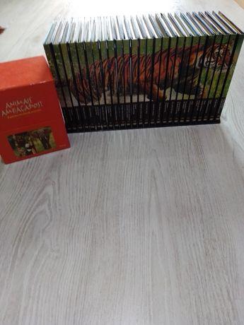 coleção de DVDs sobre a Vida selvagem