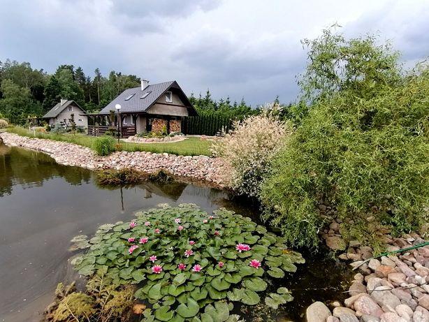 Ostoja 1 nad Szelągiem, domek nad jeziorem