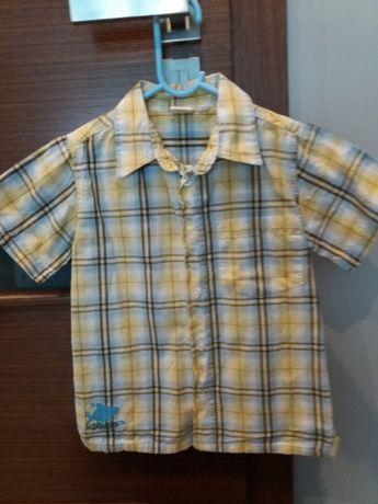Koszula żółta, krata, Coolclub, 110