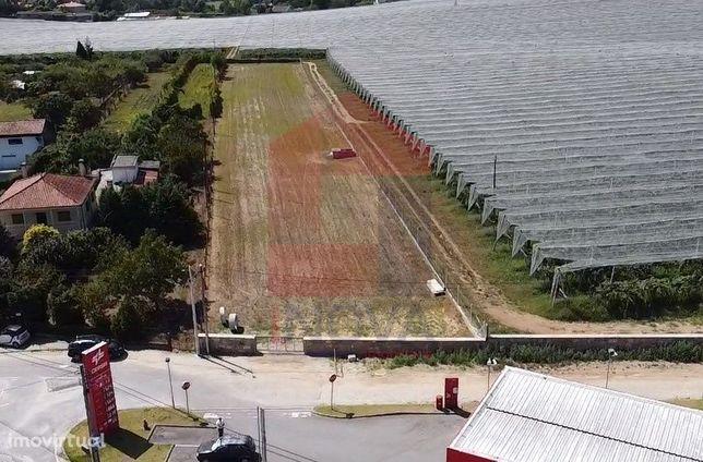 Arrenda-se Terreno agrícola em Lago, Amares