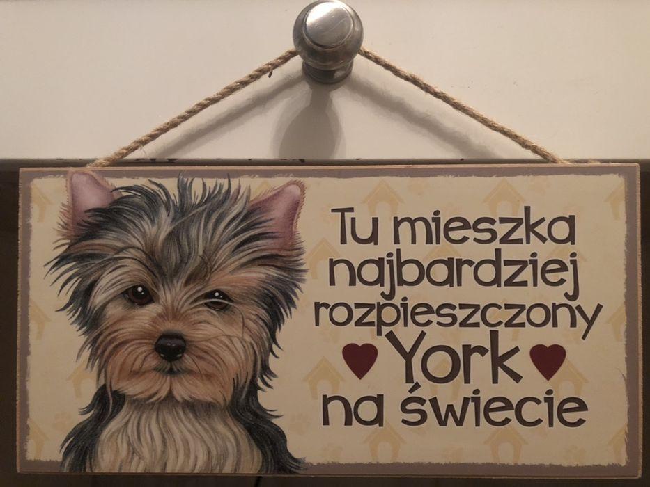 Tabliczki na drzwi Warszawa - image 1