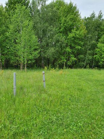 Земля под застройку с электричеством 3 фазы, 25 соток, рядом лес.