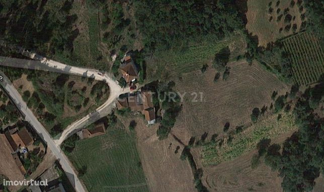 Moradia T2 - POMBAL - 2950 m2 de Terreno