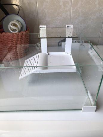 Aquario de tartaruga Ciano 40cm x 20cm com filtro interno