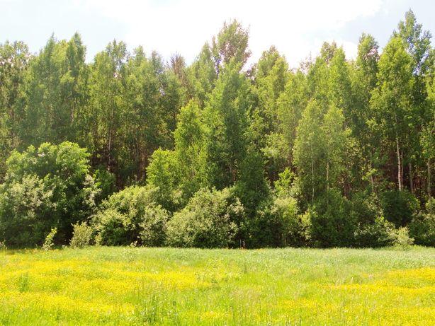 Земельний участок 15соток. с. Сувид рядом лес, река и озера