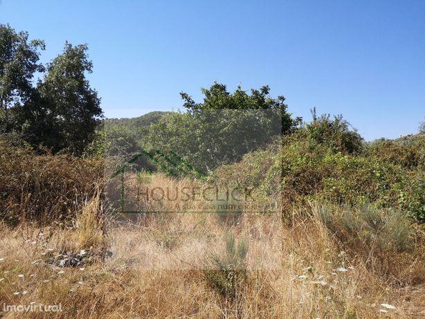 Terreno com Oliveiras e Árvores de fruto na BENDADA, SABUGAL,