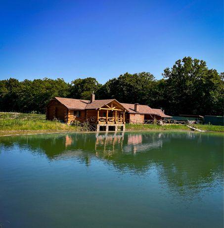 Дерев'яний будинок біля озера