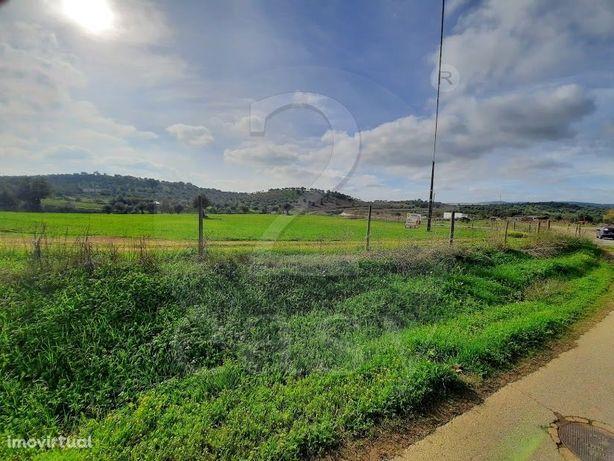 Terreno agrícola com 2,34 hectares