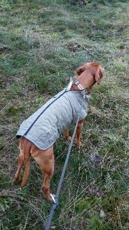 Ubranie na polowanie dla pupila